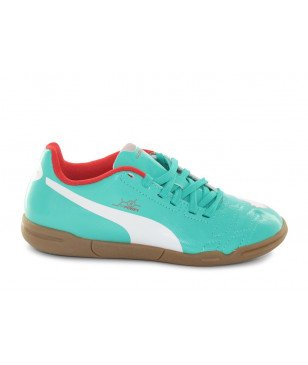 PUMA EVO POWER 4