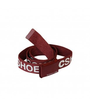 Ceinture DC Shoes